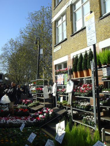 london,columbia flower market